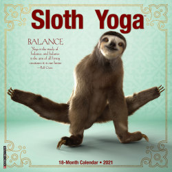 "Willow Creek Press Animal Monthly Wall Calendar, 12"" x 12"", Sloth Yoga, January To December 2021"