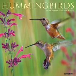 "Willow Creek Press Animals Monthly Wall Calendar, Hummingbirds, 12"" x 12"", January To December 2021"