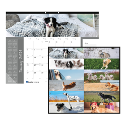 """Blueline® Man's Best Friend Collection Monthly Desk Pad Calendar, 22"""" x 17"""", 50% Recycled, FSC® Certified, Dogs, January to December 2021"""