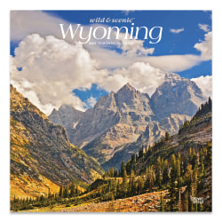 """Brown Trout Regional Monthly Wall Calendar, 12"""" x 12"""", Wyoming Wild, January To December 2021"""
