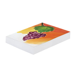 """Pacon® Art1st® Mixed Media Art Paper, 18"""" x 24"""", White, 1,000 Pages (500 Sheets)"""