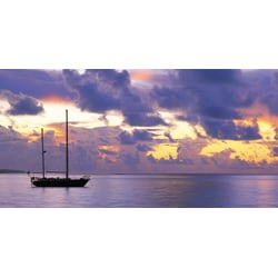 "Biggies Wall Mural, 40"" x 80"", Sunset Sail"