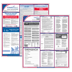 "ComplyRight™ California Federal/State Labor Law Spanish Poster Kit, 39 1/2"" x 24"""