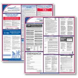 ComplyRight™ Federal And State Labor Law Poster Set, Spanish, Texas