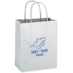 Paper Shopping Bags-White 10x5x13