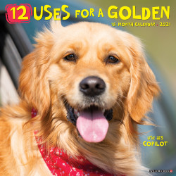 "Willow Creek Press Animals Monthly Wall Calendar, 12 Uses For A Golden, 12"" x 12"", January To December 2021"