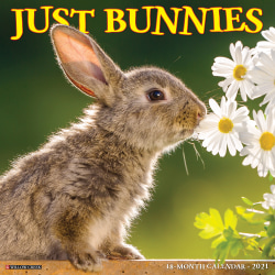 "Willow Creek Press Animals Monthly Wall Calendar, Bunnies, 12"" x 12"", January To December 2021"