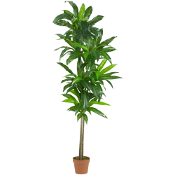 Nearly Natural 6'H Real-Touch Silk Dracaena Plant With Pot, Green