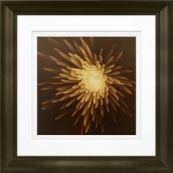 "Timeless Frames Marren Espresso-Framed Floral Artwork, 8"" x 8"", New Mum"