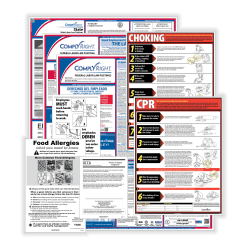 ComplyRight Federal/State Labor Law And Restaurant Poster Kit, English, Washington