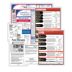 ComplyRight™ Restaurant Federal And State Labor Law 1-Year Poster Service, English, Puerto Rico