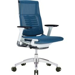 Raynor® Powerfit Ergonomic Mesh Mid-Back Executive Chair, Blue/White