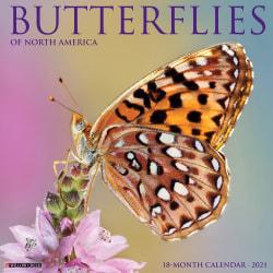 """Willow Creek Press Animals Monthly Wall Calendar, Butterflies, 12"""" x 12"""", January To December 2021"""