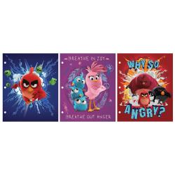 "Inkology 2-Pocket Portfolios, 11-3/4"" x 9-1/2"", Letter Size, Angry Birds, Pack Of 24 Portfolios"