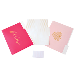 See Jane Work® File Folders, Letter Size, Pink, Pack Of 6