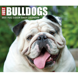 """Willow Creek Press Page-A-Day Daily Desk Calendar, 4-1/4"""" x 5-1/4"""", FSC® Certified, Just Bulldogs, January to December 2021, 14233"""