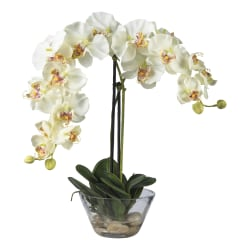 """Nearly Natural 18""""H Phalaenopsis Silk Flower Arrangement With Glass Vase, White"""
