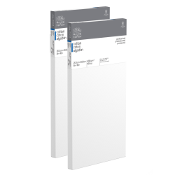 """Winsor & Newton Professional Cotton-Stretched Traditional Canvases, 16"""" x 8"""", White, Pack Of 2"""