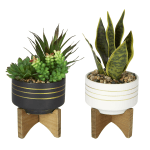 """Office Depot® 4-1/2""""H Rubber Artificial Mixed Succulent With Stand, 4-1/2"""" x 4-1/2"""", Assorted Colors"""