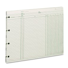 Wilson Jones Ledger Sheets Ending Balance