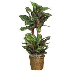 Nearly Natural 45 Silk Maranta Plant