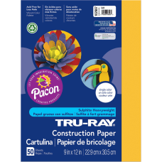 Tru Ray Construction Paper Project 12