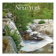 Brown Trout Regional Monthly Wall Calendar