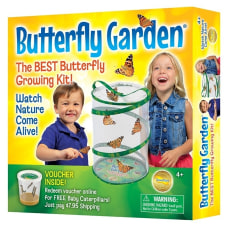 Insect Lore Butterfly Garden Pre K