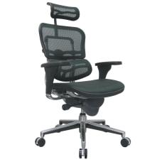 Raynor Ergohuman High Back Mesh Chair