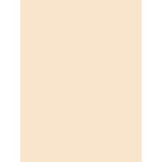 Pacon Tag Board 9 x 12