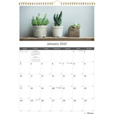 Rediform Succulent Plants Wall Calendar Monthly