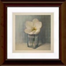 Timeless Frames Katrina Framed Floral Artwork