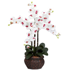Nearly Natural 31 H Silk Phalaenopsis