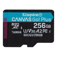 Kingston Canvas Go Plus 256 GB