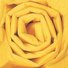 Partners Brand Buttercup Gift Grade Tissue