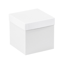 Partners Brand White Deluxe Gift Box