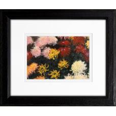 Timeless Frames Supreme Addison Framed Floral