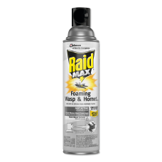 Raid Max Foaming Wasp Hornet Killer