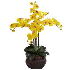 Nearly Natural 31 H Silk Phalaenopsis