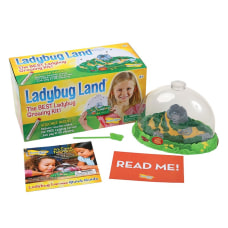 Insect Lore Ladybug Land Pre K