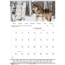 Doolittle Wildlife Wall Calendar 12 x