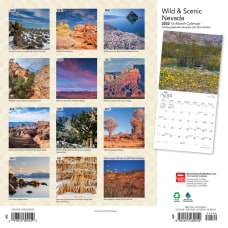 Brown Trout Monthly Regional Wall Calendar
