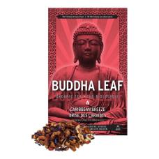 Tea Squared Buddha Caribbean Breeze Organic