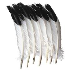 Creativity Street Imitation Eagle Feathers Decoration