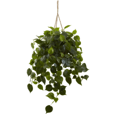 Nearly Natural 3H Philodendron With Hanging