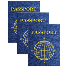 Ashley Productions Blank Passports 12 Per