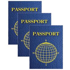 Ashley Productions Blank Passports 12 Per
