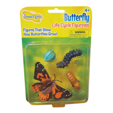 Insect Lore Butterfly Life Cycle Stages