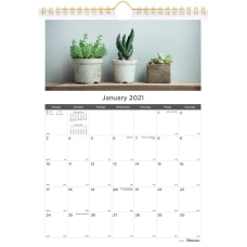 Blueline Succulent Plants Wall Calendar Monthly