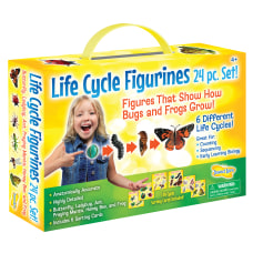 Insect Lore Life Cycle Figurines Set